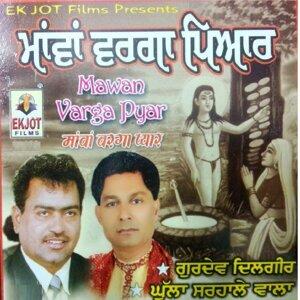 Gurdev Dilgir, Ghulla Sarhale Wala, Vijay Sitara 歌手頭像