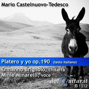 Ermanno Brignolo (Chitarra), Minie Minarelli (Voce) 歌手頭像