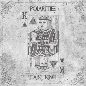 Polarities 歌手頭像