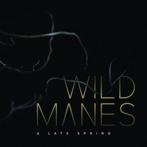 Wild Manes 歌手頭像