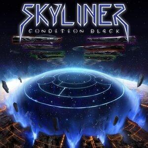 Skyliner 歌手頭像