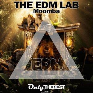 The EDM Lab 歌手頭像