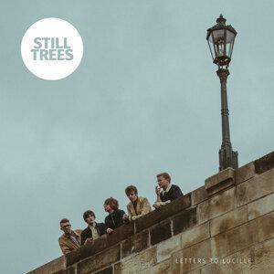 Still Trees 歌手頭像