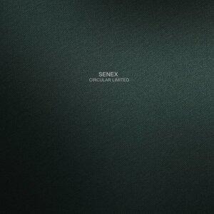 Senex 歌手頭像