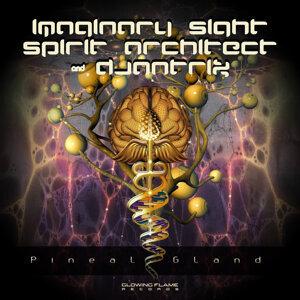 Imaginary Sight, Spirit Architect, Djantrix 歌手頭像