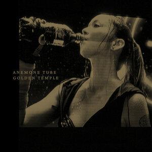 Anemone Tube 歌手頭像