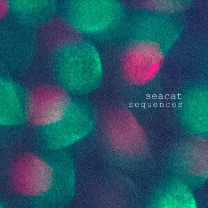 Seacat 歌手頭像