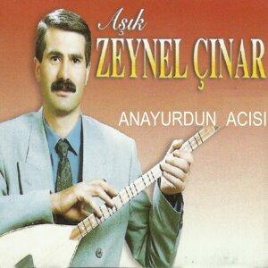 Aşık Zeynel Çınar 歌手頭像