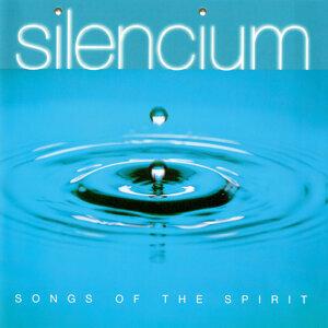 John Harle, Silencium Ensemble 歌手頭像