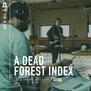 A Dead Forest Index 歌手頭像