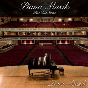Piano Musik 歌手頭像