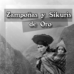 Conjunto de Zampoñas Motorizada Ilave 歌手頭像