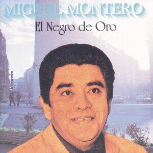 Miguel Montero 歌手頭像