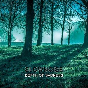 Slownoise 歌手頭像