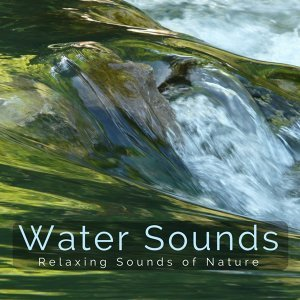 Water Sounds 歌手頭像