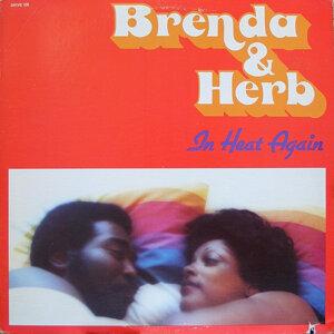 Brenda, Herb 歌手頭像