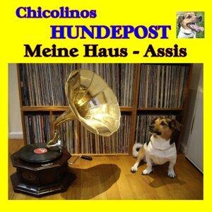 Chicolinos Hundepost 歌手頭像