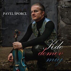 Pavel Sporcl 歌手頭像