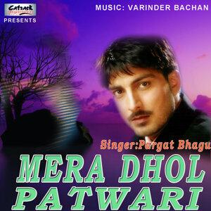 Pargat Bhagu 歌手頭像