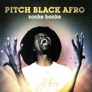 Pitch Black Afro 歌手頭像