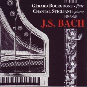 Gerard Bourgogne, Chantal, Stigliani 歌手頭像