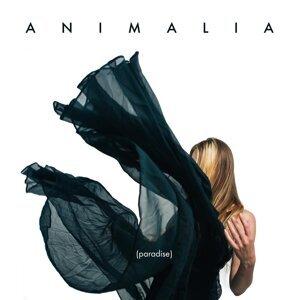 Animalia 歌手頭像
