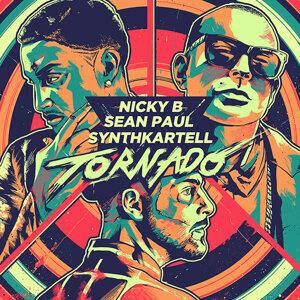 Synthkartell, Sean Paul, Nicky B 歌手頭像