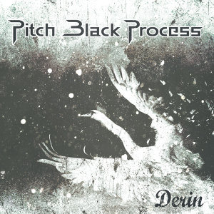 Pitch Black Process 歌手頭像