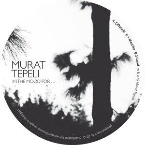 Murat Tepeli 歌手頭像