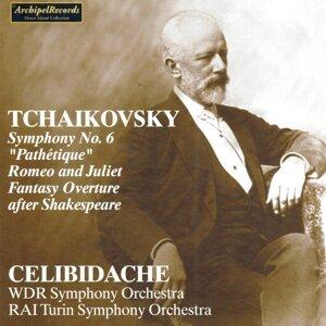 Rai Turin Symphony Orchestra, Sergiu Celibidache 歌手頭像