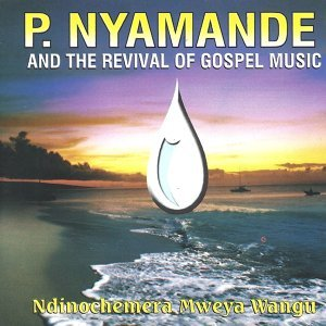 P Nyamande & The Revival of Gospel Music 歌手頭像