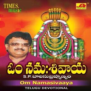 S. P. Balasubrahmanyam 歌手頭像