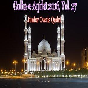 Junior Owais Qadri 歌手頭像