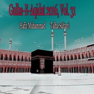 Hafiz Muhammad Talha Sultani 歌手頭像