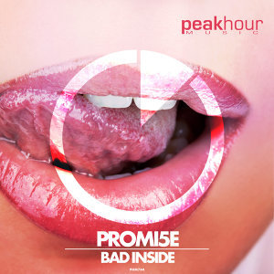 Promi5e 歌手頭像