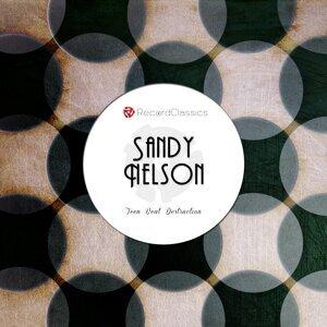Sandy Nelson 歌手頭像