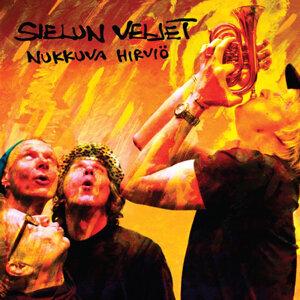 Sielun Veljet 歌手頭像