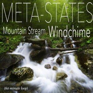 Meta-States 歌手頭像