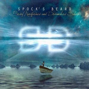 Spock's Beard 歌手頭像