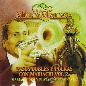 Mariachi de Pepe Chavez 歌手頭像