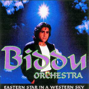 The Biddu Orchestra 歌手頭像