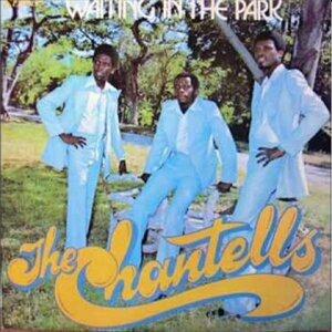 The Chantells 歌手頭像