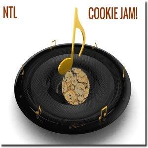 NTL 歌手頭像