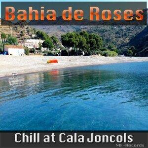 Bahia de Roses 歌手頭像