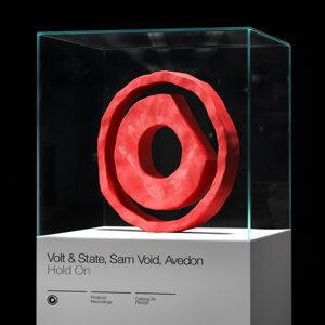 Volt & State, Sam Void, Avedon 歌手頭像
