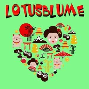 Lotusblume 歌手頭像