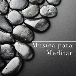 Piano Classics 101 & Relajacion Del Mar & Canciones de Amor 歌手頭像