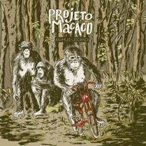 Projeto Macaco 歌手頭像