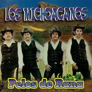 Los Michoacanos 歌手頭像