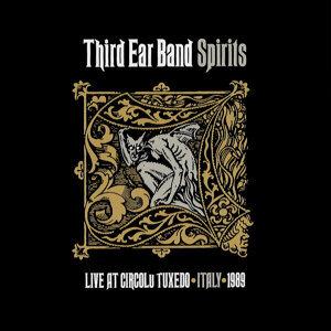 Third Ear Band